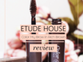 REVIEW | Etude House Color My Brow in Rich Brown