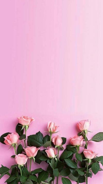 Belajar Menulis Bersama Beautynesia