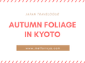 JAPAN TRAVELOGUE : AUTUMN FOLIAGE IN KYOTO