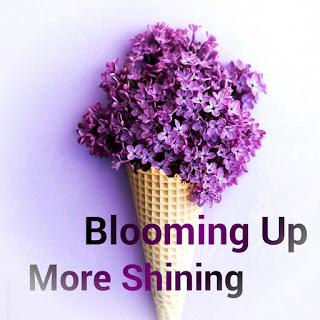 Blooming Up & More Shining!