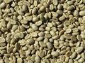 Beginilah Cara Kerja Green Coffee untuk Diet dan Resiko Mengkonsumsinya