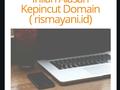 Inilah Alasan Kepincut Domain (rismayani.id)