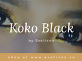 REVIEW KOKO BLACK SOFTLENS BY EXOTICON