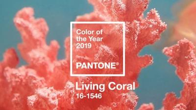 Pantone Color of the Year 2019 Make Up : Living Coral