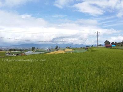 Keseruan Jalan-Jalan Pakai Motor Menikmati Pemandangan Perkampungan di Kaki Gunung Merapi
