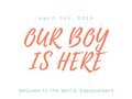 Welcome BabyNumber3