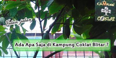 Keliling Kampung Coklat, Wisata Edukasi di Blitar, Ada Apa Saja ?