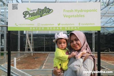 Family Trip ke Pradipto Farm, Kebun Hidroponik Ramah Anak